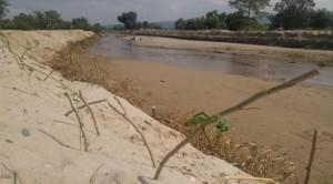 洪水から集落を守るための植林