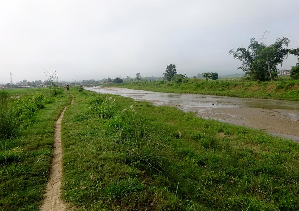 自然と緑が生い茂ってきた下流の土堤