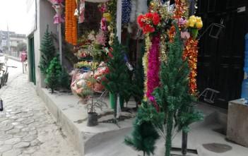 花屋の前にもプラスチックのツリーがたくさん並んでいます
