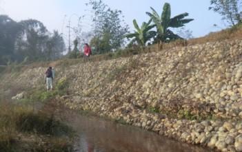 前年度に設置された堤防の様子