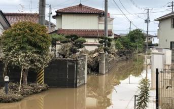 typhoon19_pc