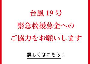typhoon19_sq_red