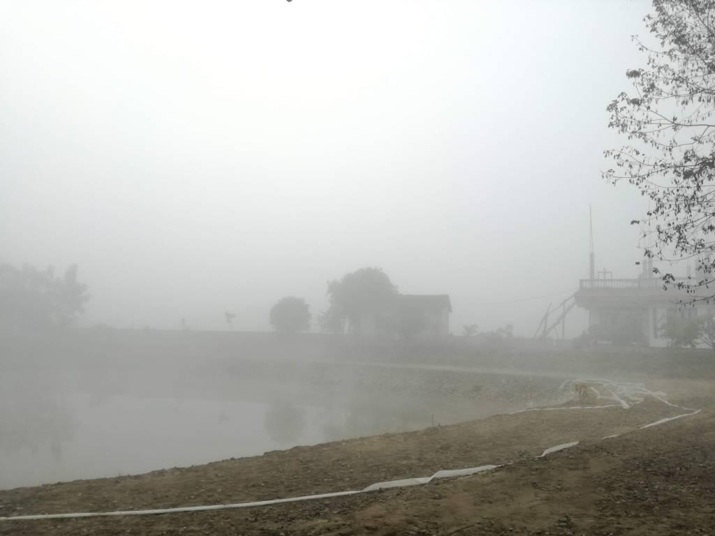 朝8時半頃。インド国境近いネパール平野部は冬の朝、霧に覆われる。
